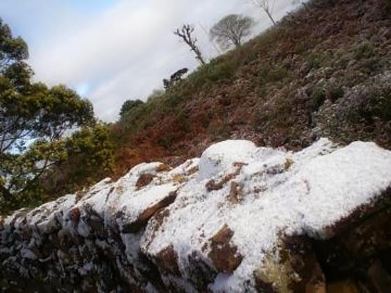 Taipa Coberta pela Neve em Nova Petrópolis