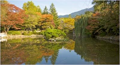 สวนในวัดพุลกุกซา (Bulguksa Temple)