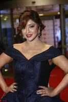 Payal Ghosh aka Harika in Dark Blue Deep Neck Sleeveless Gown at 64th Jio Filmfare Awards South 2017 ~  Exclusive 103.JPG