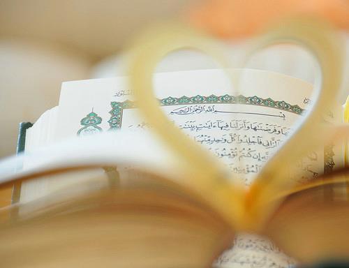 Cute N Lovely Wallpapers Quran Beautiful