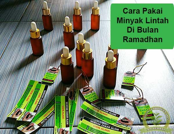 Cara pakai minyak lintah di bulan ramadhan