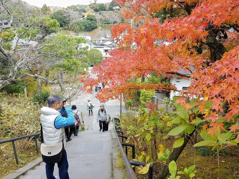 東慶寺外的秋色