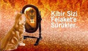 kedi aslan ayna