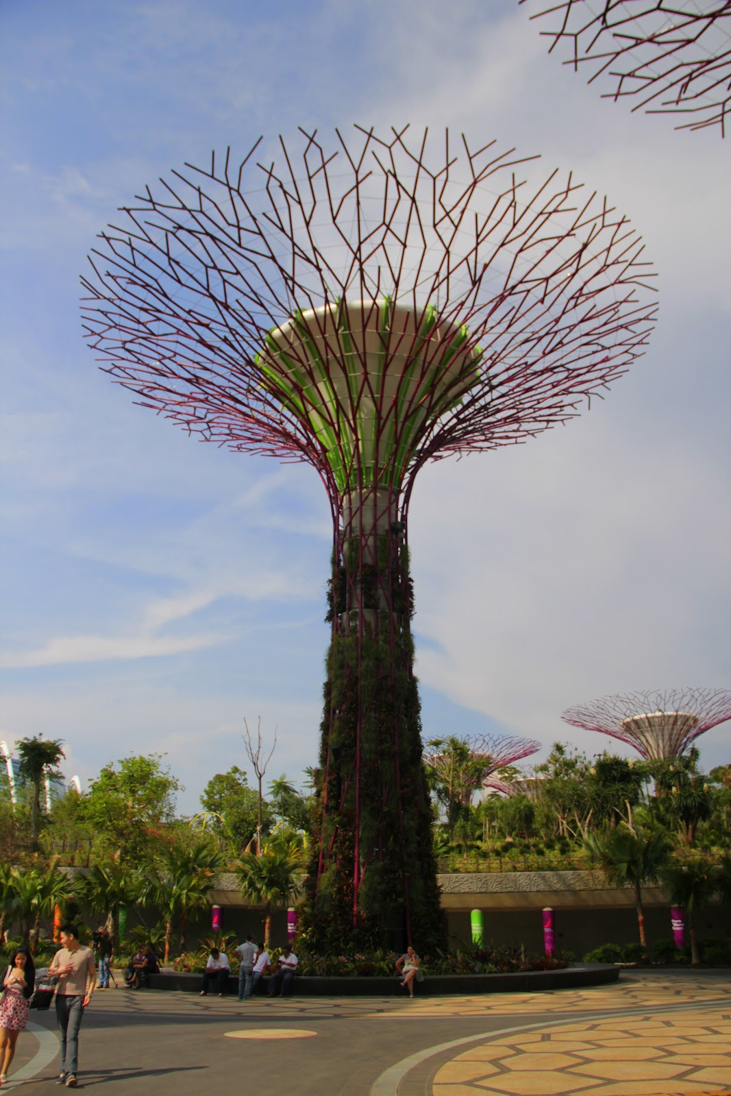 Gardens By The Bay Alive Museum: Visited Supertree Grove, Gardens By The Bay With Conan