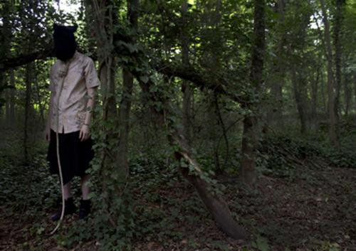 Hutan Aokigahara di jepang merupakan tempat paling angker dan menyeramkan