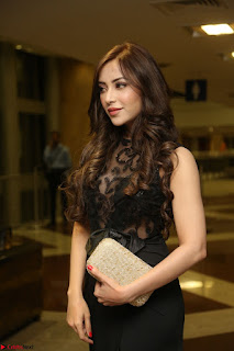 Angela Krislinzki in Transparent Black Gown at Rogue Movie Teaser Launch 1st March 2017 114.JPG