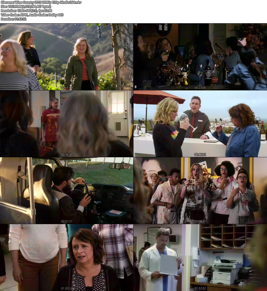 Wine Country 2019 HDRip 720p Hindi x264 | 480p 300MB | 100MB HEVC Screenshot