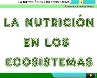 http://www.ceiploreto.es/sugerencias/cplosangeles.juntaextremadura.net/web/curso_4/naturales_4/nutricion_ecosistemas_4/nutricion_ecosistemas_4.html