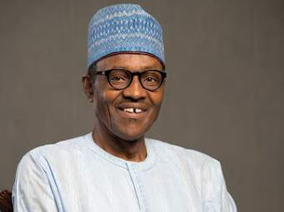 nigeria today,chidi young buhari