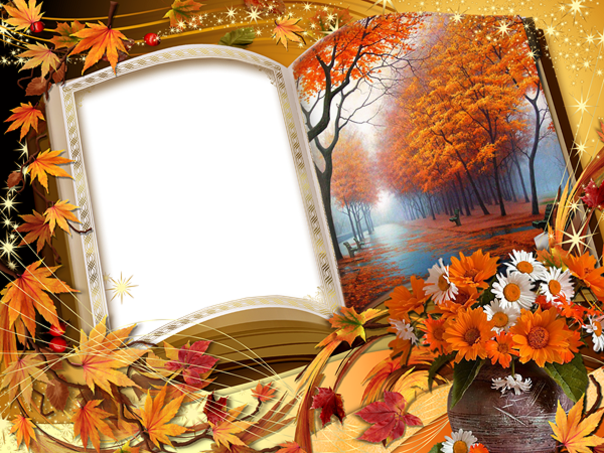 Beautiful Photoshop Frames Image Download Free All Hd