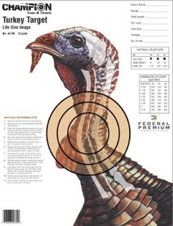 Accessible Hunter: Paper Turkey Target