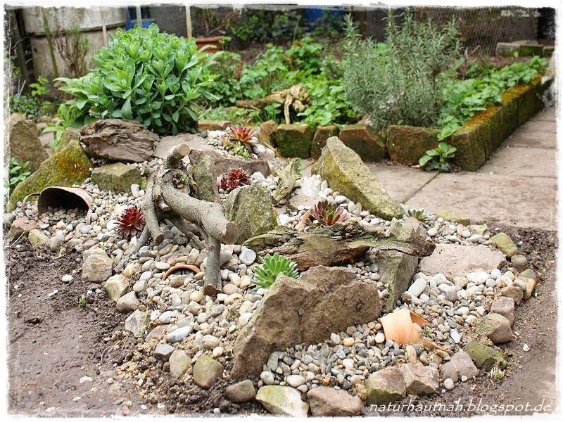 Natur Hautnah Erleben: Steingarten Vergrößert
