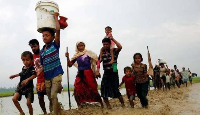 2.500 Rohingya Kembali Mengungsi dari Rakhine