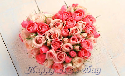 Awesome Rose Day HD Images