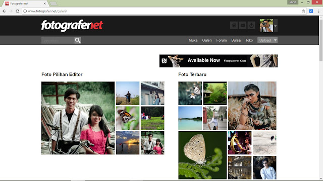 Screen capture gallery fotografer dot net.