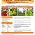 Plant Feed - ΑΝΘΟΦΟΡΙΑΣ - Leaflet