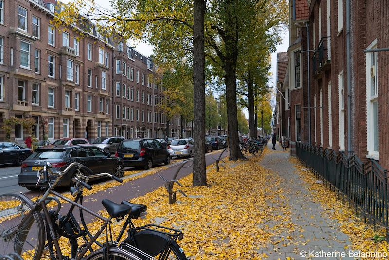 Oud-Zuid Street Things to Do Amsterdam Vacation
