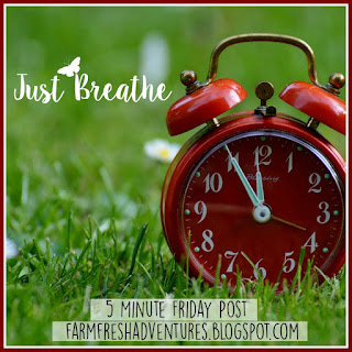 5 Minute Friday: Just Breathe