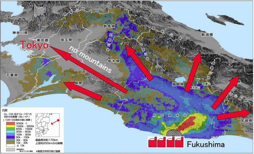Tokyo Japan Should Be Evacuated Says Dr Mita MD Much Of - Fukushima radiation 2016 us map