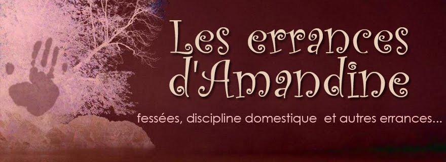Logo Les errances d'Amandine