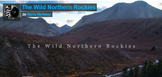 Video: The Wild Northern Rockies