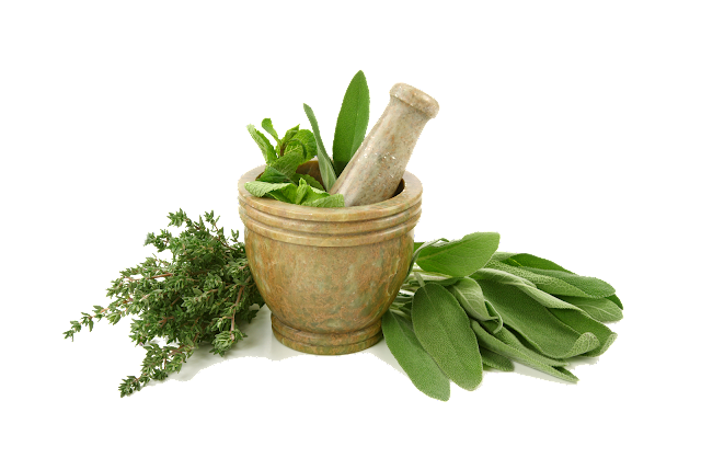 Ayurveda For General Health - E Herbal Shop