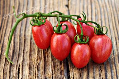 http://pomidorowadolina.pl/files/IMG_9698-crop.JPG