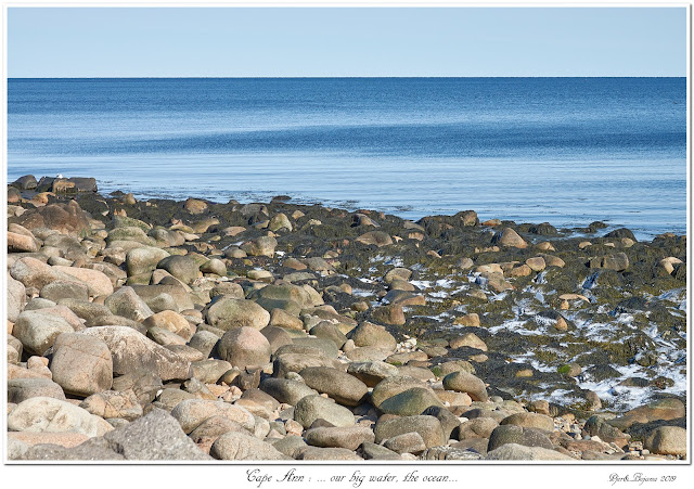 Cape Ann: ... our big water, the ocean...