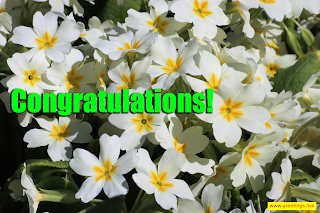 congratulations flowers Images greetings