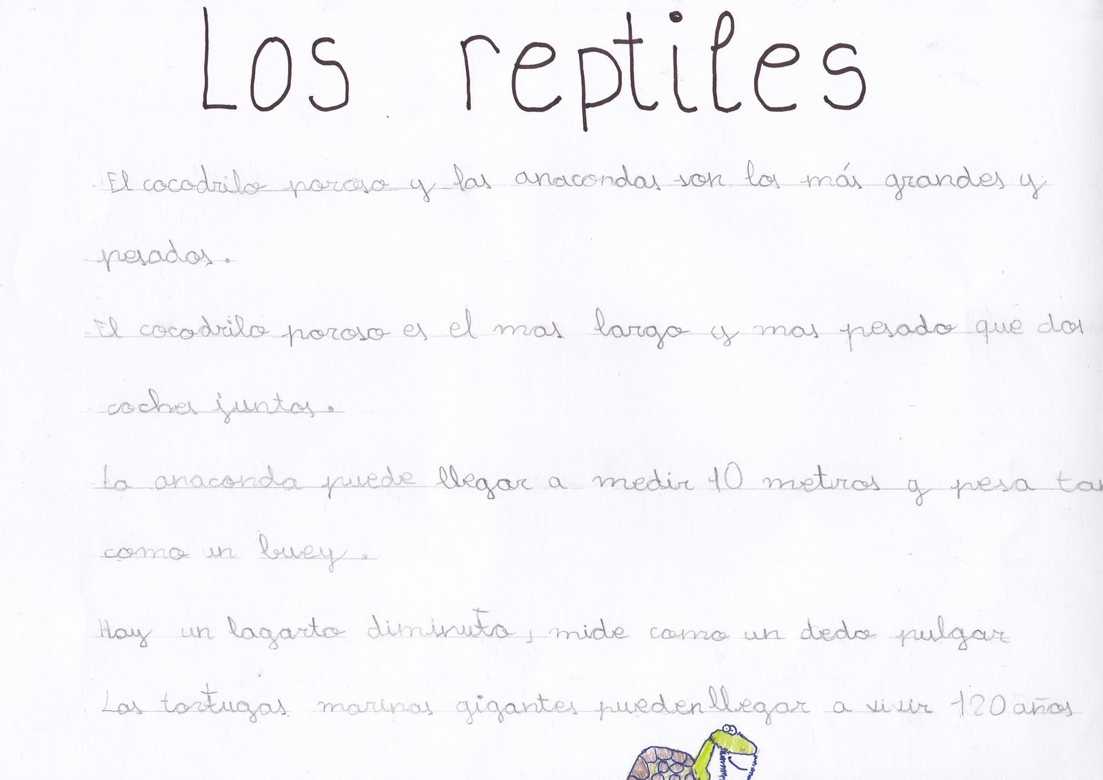 Ceip El Zargal Second Grade Los Reptiles Alfredo