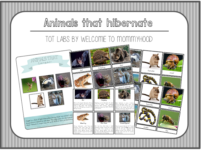 Montessori Animals that hibernate printables by Welcome to Mommyhood #montessori, #montessoriprintables, #montessoriactivities, #preschool, #kindergarten, #homeschool,