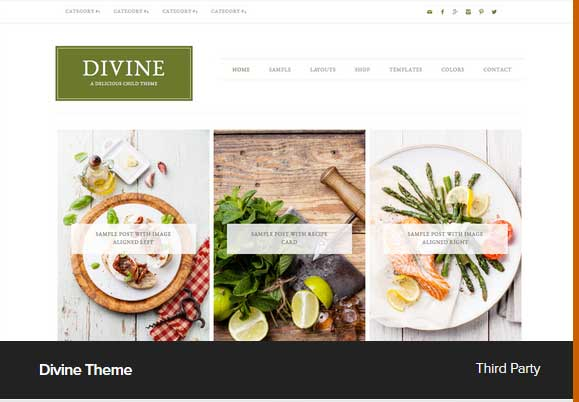 Divine Theme Award Winning Pro Themes for Wordpress Blog : Award Winning Blog