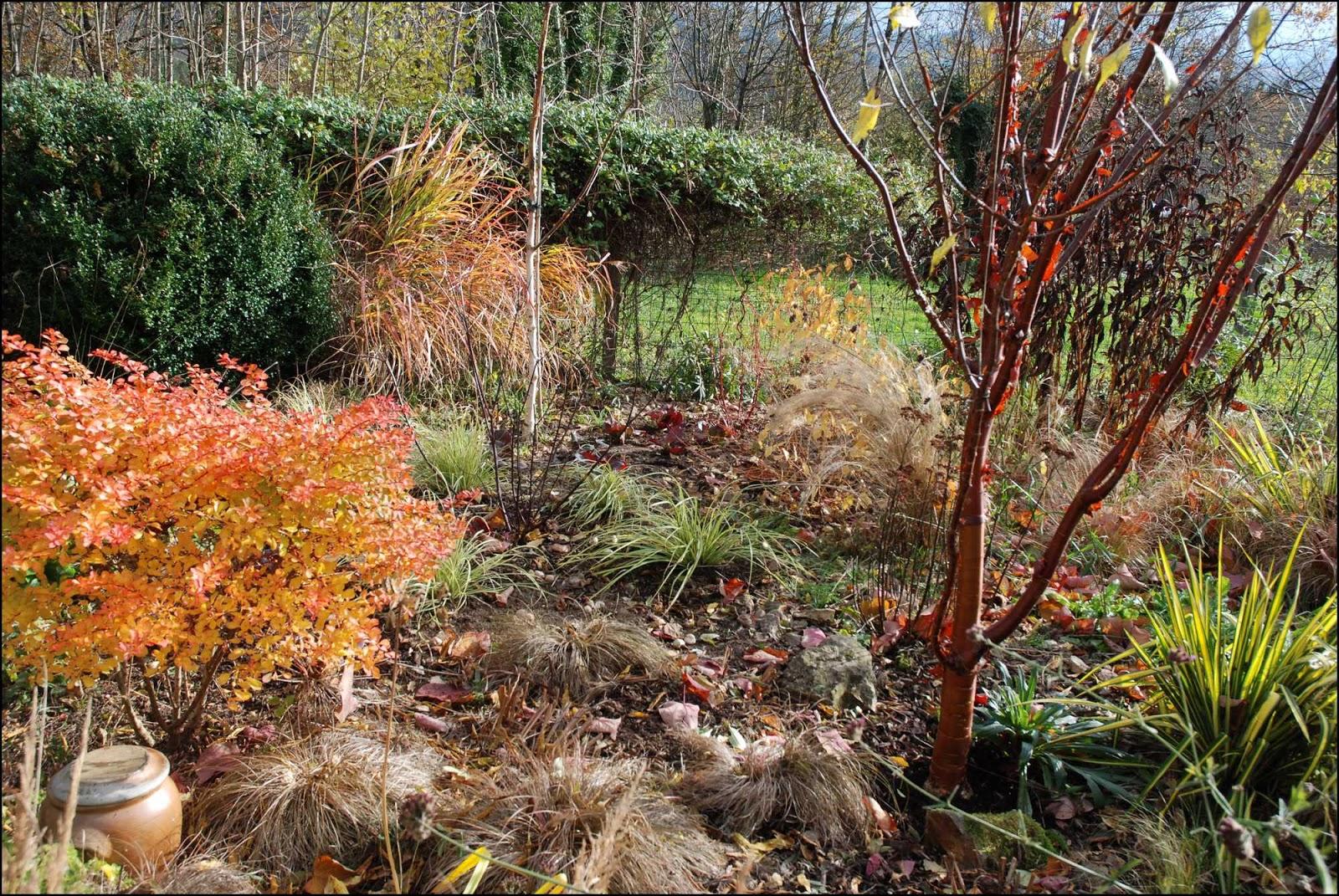 Le jardin du mayet une partie du jardin qui se transforme for Entretien du jardin en hiver