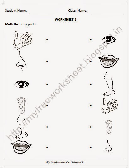 Free Downlaod worksheets PDF for NURSERY EVS Match the Body ...