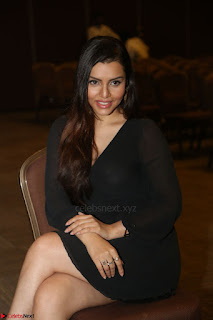 Kyra Dutta in black At Rogue Movie Audio Launch ~  036.JPG