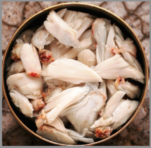 Crab Meat Supplier, Crab Canning Factory, Crab Farming, Crab Meat
