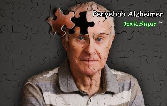 penyebab alzheimer dan faktor yang memperparah resiko