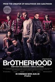 Download Brotherhood (2016)