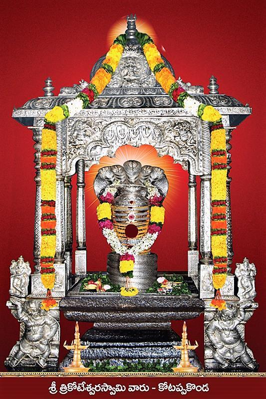 Kotappa Konda Sri Trikoteswara Swamy Temple