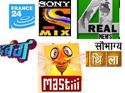 France24, MAStii, Sony Mix, 4Real News, Sobhagya Mithila, Dabangg TV Channels on DD Direct Plus