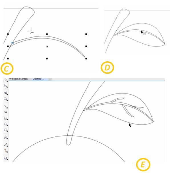 Tutorial Cara Menggambar Buah Jeruk Dengan Coreldraw X7 Iisanim Child
