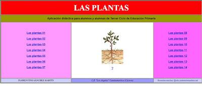 https://cplosangeles.educarex.es/web/cmedio5/las_plantas/index.htm
