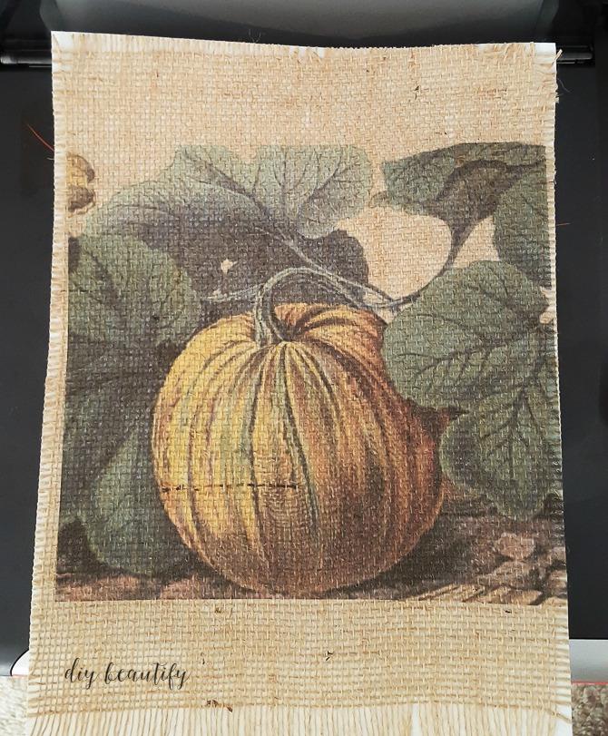 printed burlalp pumpkin