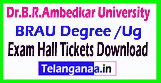 Dr.B.R.Ambedkar University BRAU Degree /Ug Reg/Supply Exam Hall Tickets Download