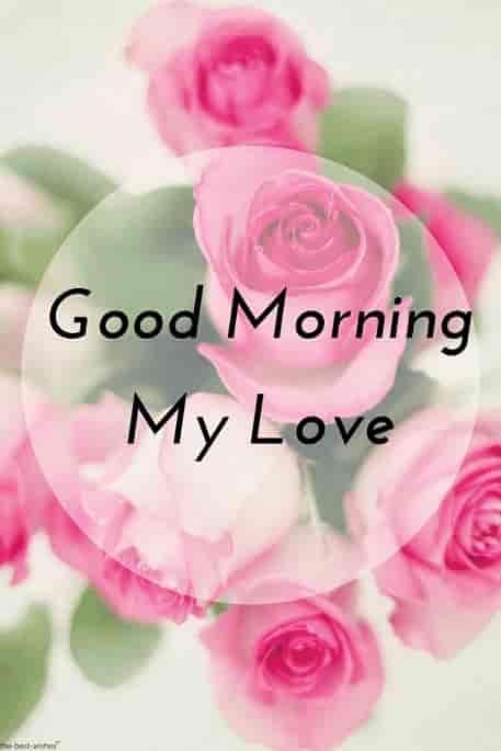 Good Morning Love Hd Wallpapers