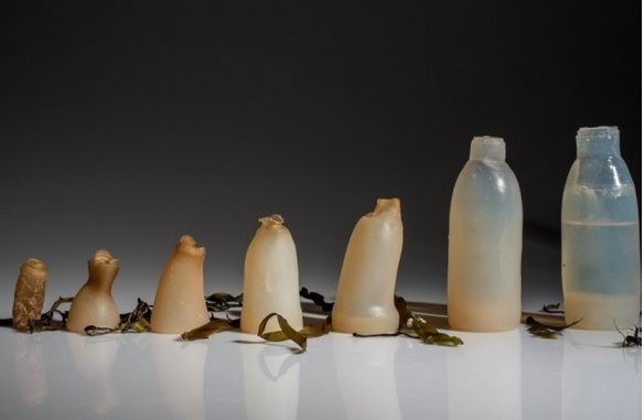 Großzügig Wie Heiße Wasserflaschen Funktionieren Bilder - Die Besten ...