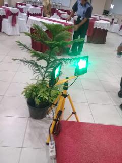 lighting tanaman