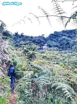 cachoeira do Batuque Aiuruoca