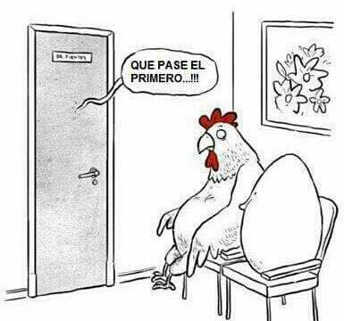 el eterno dilema, l gallina o el huevo