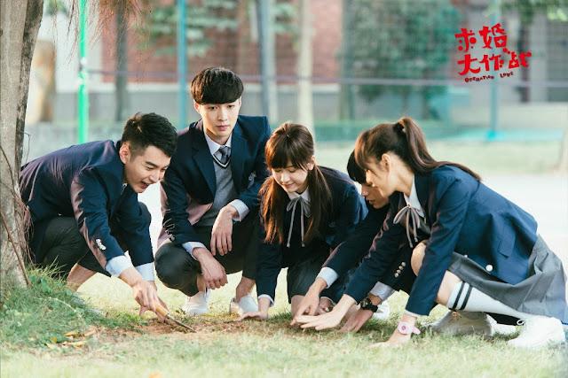 Operation Love c-drama
